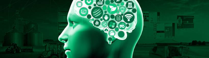 Data Intelligence: 4 empresas que usam e provêm dados a seu favor